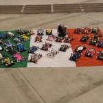campionato squadre mini4wd
